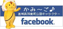 宮城県加美町公認キャラクターかみ~ごフェイスブック